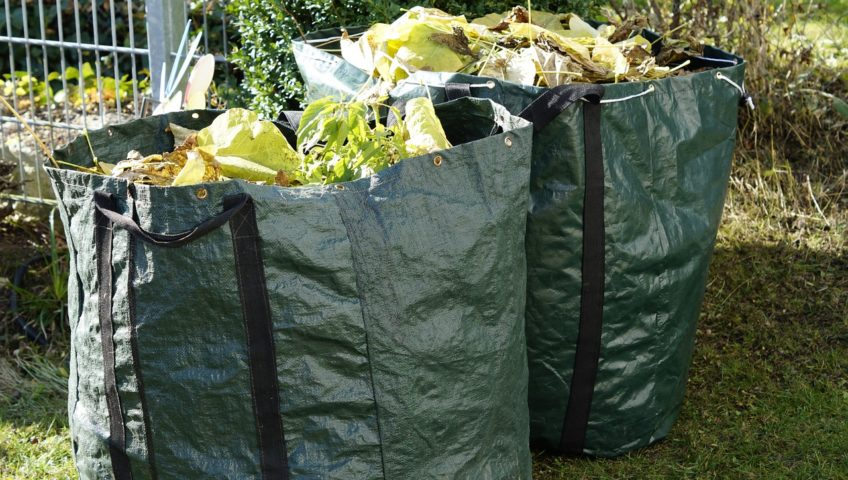 Garden waste removal bags in garden